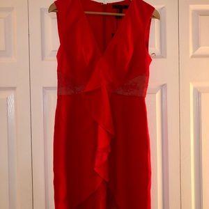 BCBG Max Azria sleeveless dress. NWT